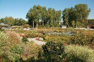 Landesgartenschaugelände